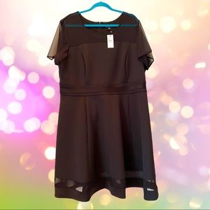 LANE BRYANT 22/24 NWT Black Dress